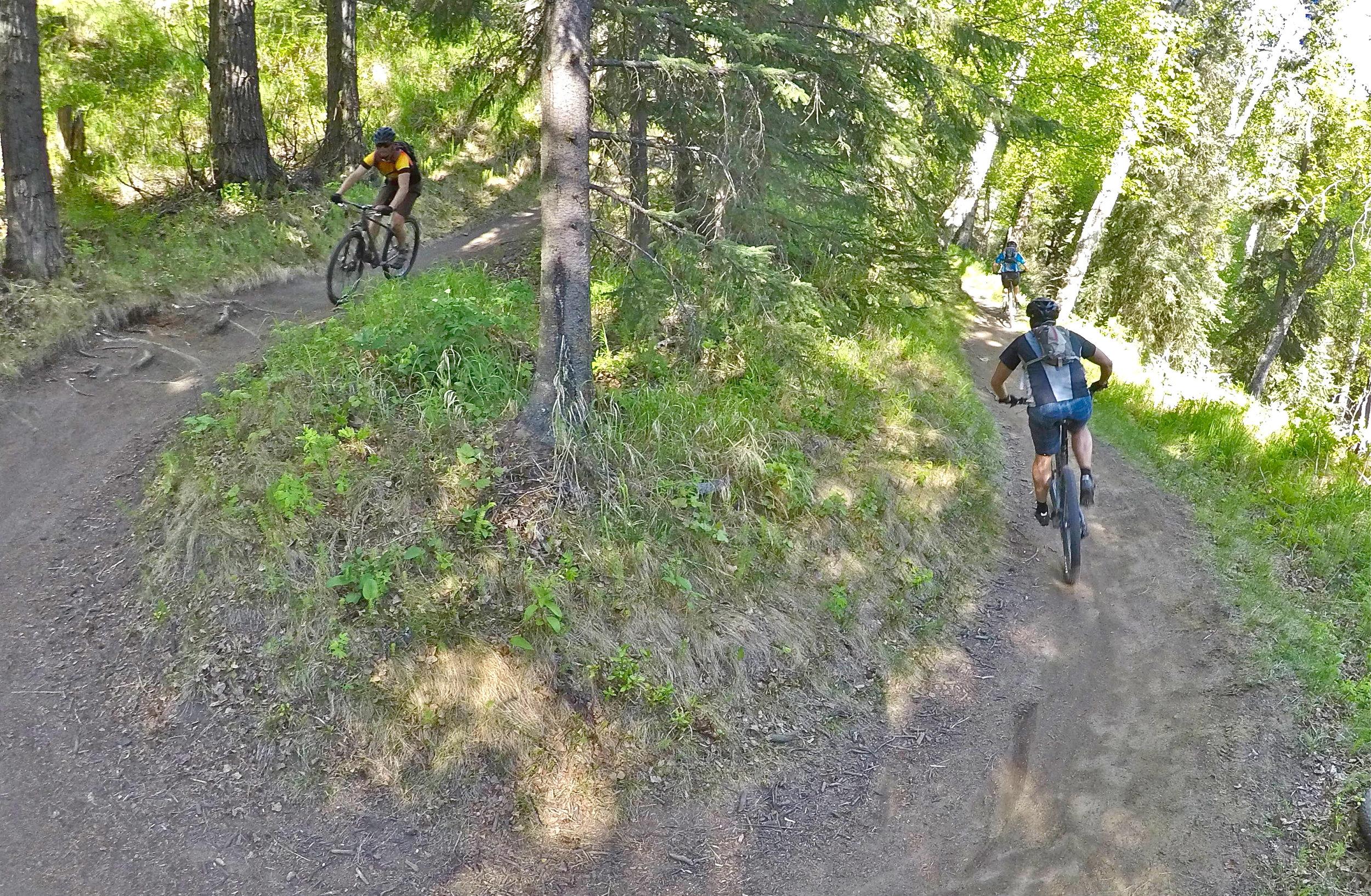 Singletrack mountain bike tour Anchorage
