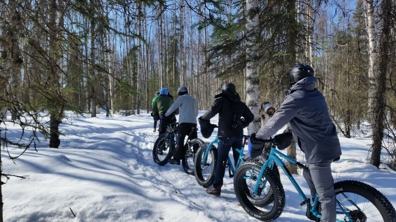 Group of people on winter fat tire bike tours