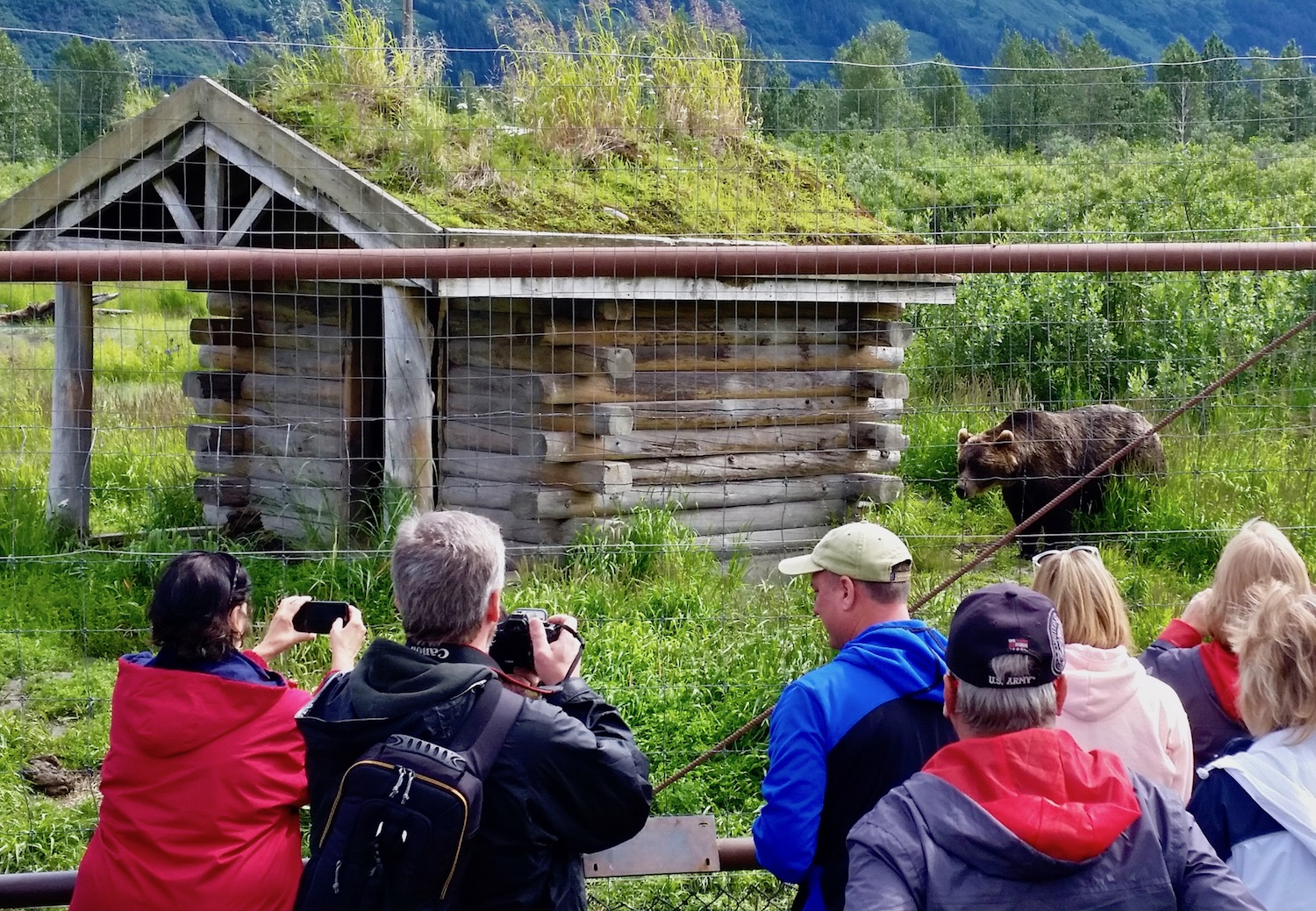 Group takes picture of bear at Alaska Wildlife Conservation Center