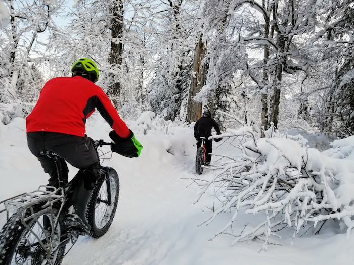 Fat tire bike tour over winter trails Anchorage