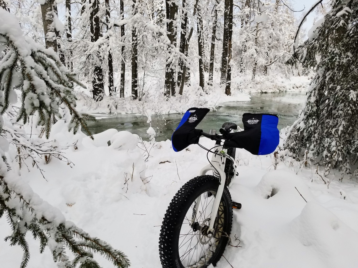 Fat tire bike in front of Campbell Creek Anchorage