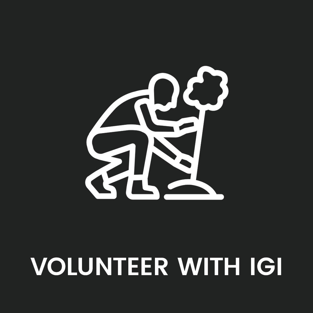 igi_brand_launch_graphics_web_get_involved2.jpg