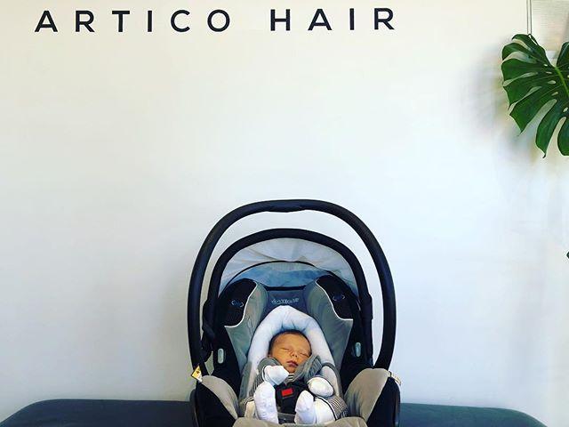 Artico hair welcomes Arlo David Nicolo  The grandson of the maker of Artico hair..... congratulations Damien and Adria 😍 @artico_hair_perth