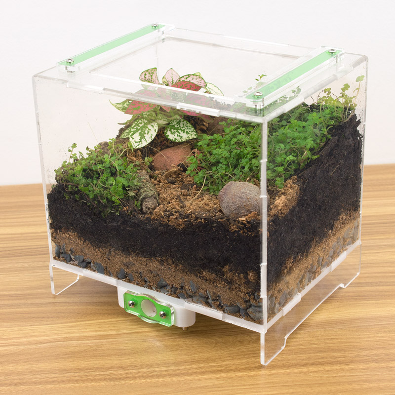 One of our medium sized outworlds which has been converted into a vivarium!