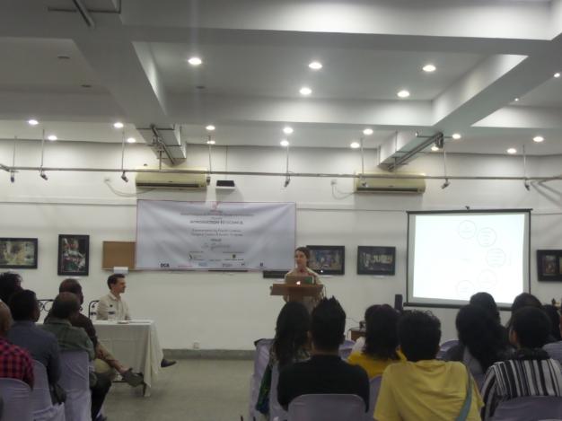 'Introduction to Council'- A presentation by Sandra Terdjman and Grégory Castéra, Samdani Seminars 2015. Courtesy of the Samdani Art Foundation.
