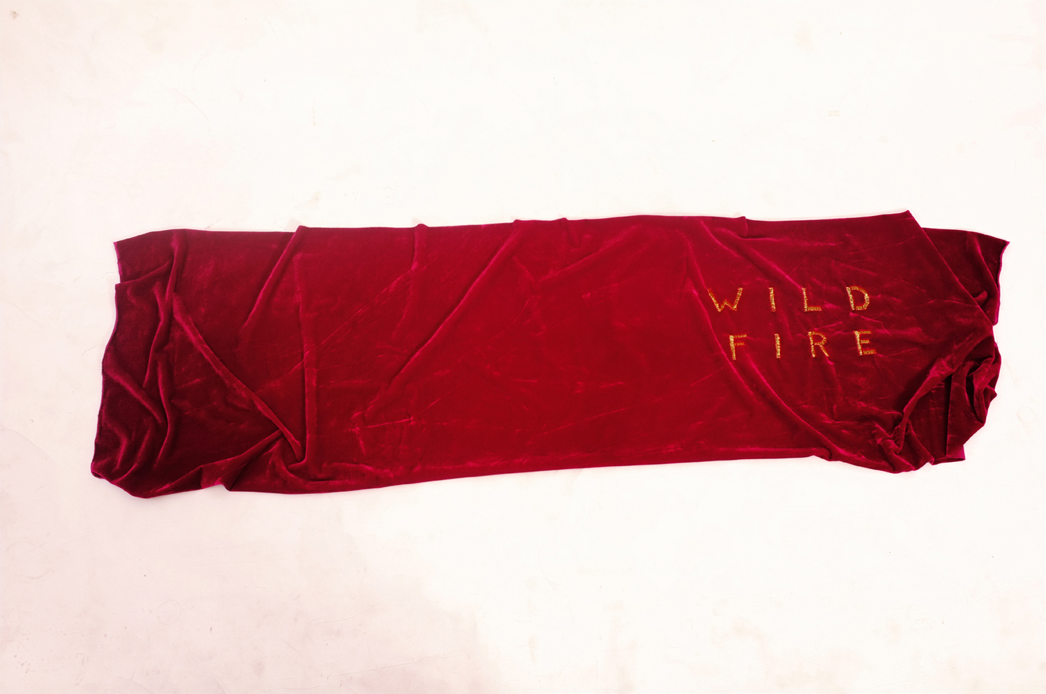 Ayesha Sultana,  Wild Fire , 2014. Courtesy of the Samdani Art Foundation