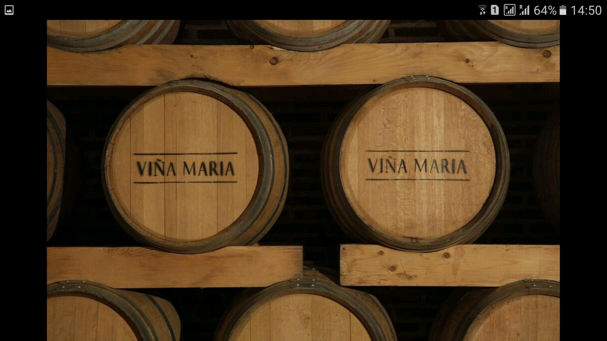 VINA-MARIA-WINERY (3).png