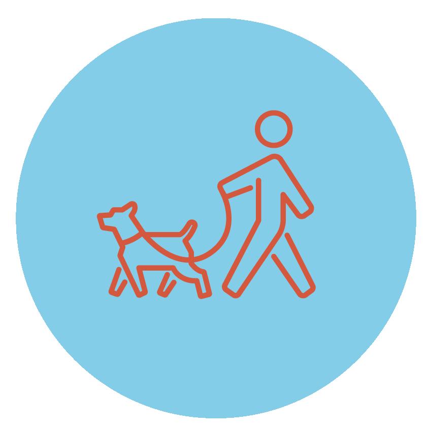 """<p><strong>PROMENADE</strong>L'activité favorite de nos chiens!<a href=""""/promenade"""">En savoir plus →</a></p>"""