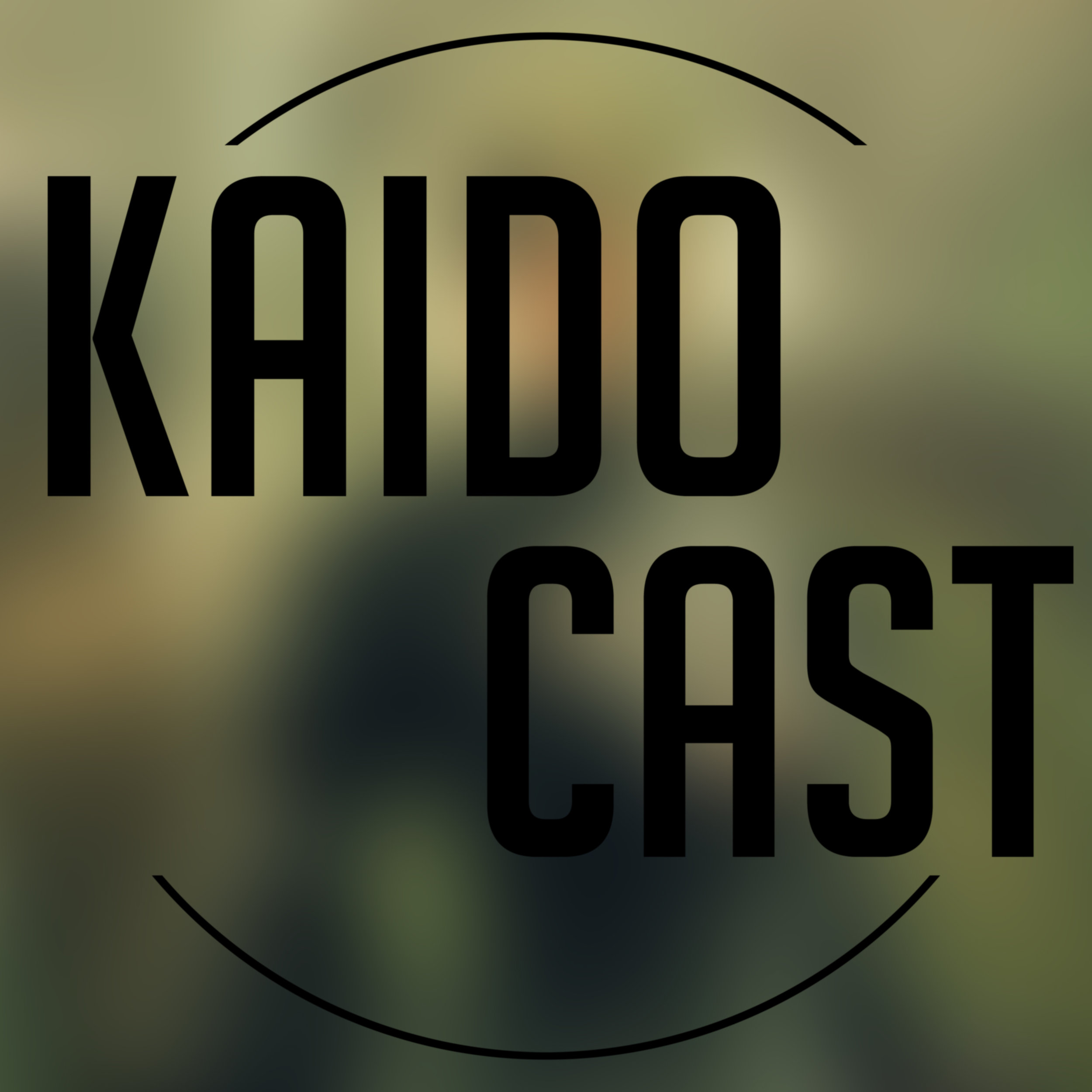KAIDO Cast 05 - Filothophical - This week we tackle the most controversial topic of the century: Canvassing. Other than that we are Luke-less and unleashed. Dave spoilers Nier, and Zac comes with knowledge of What Remains of Edith Finch.
