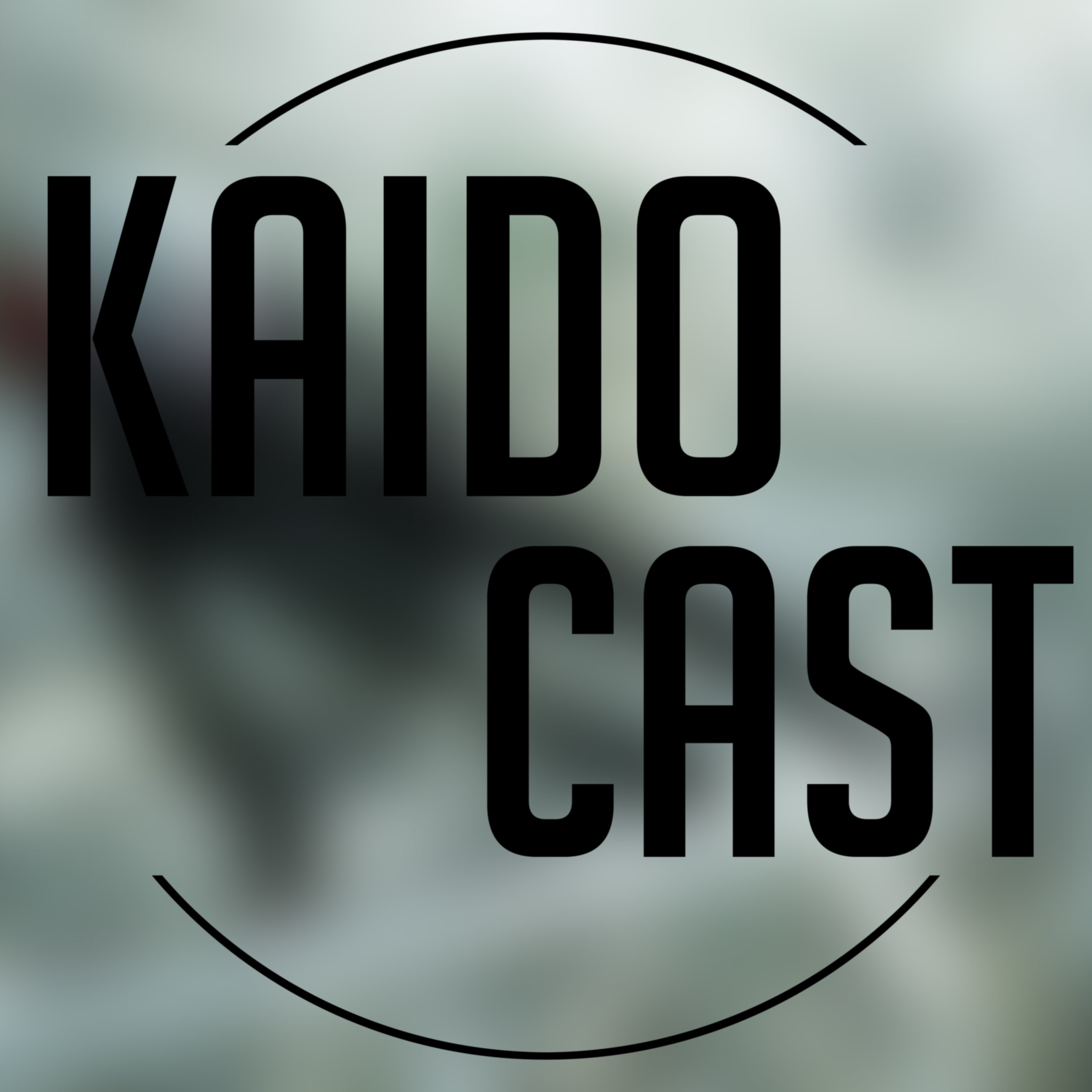 KAIDO Cast 16 - Ecco the Rob - This week there were some technical difficulties, but don't let that lead you away! Dave tells us about a new game called Echo, while continuing our conversation on Metroid and Divinity. Rob dabbles…