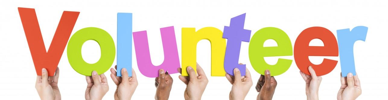volunteer photo.jpg