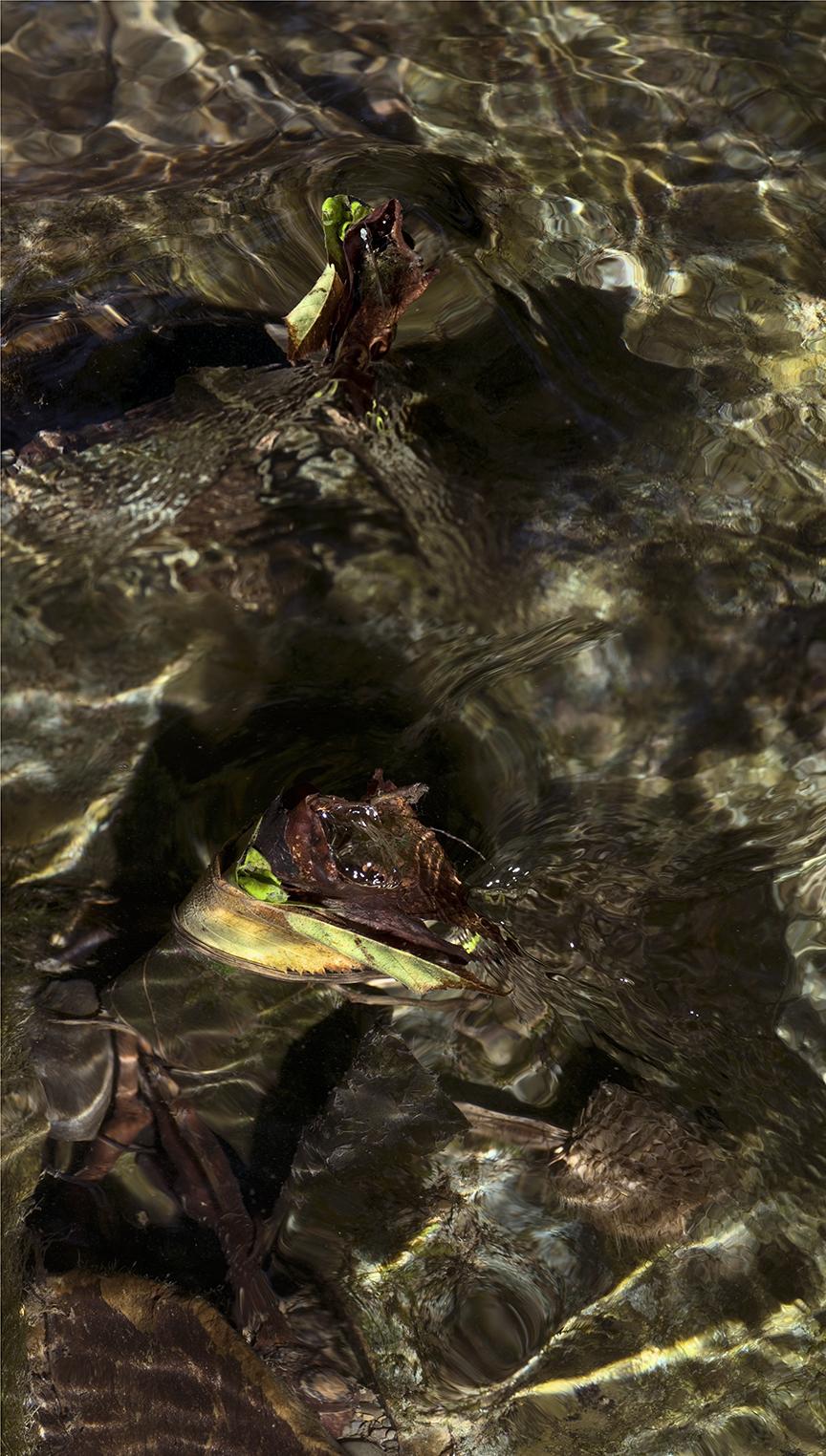 Creek Character - 1 +.jpg