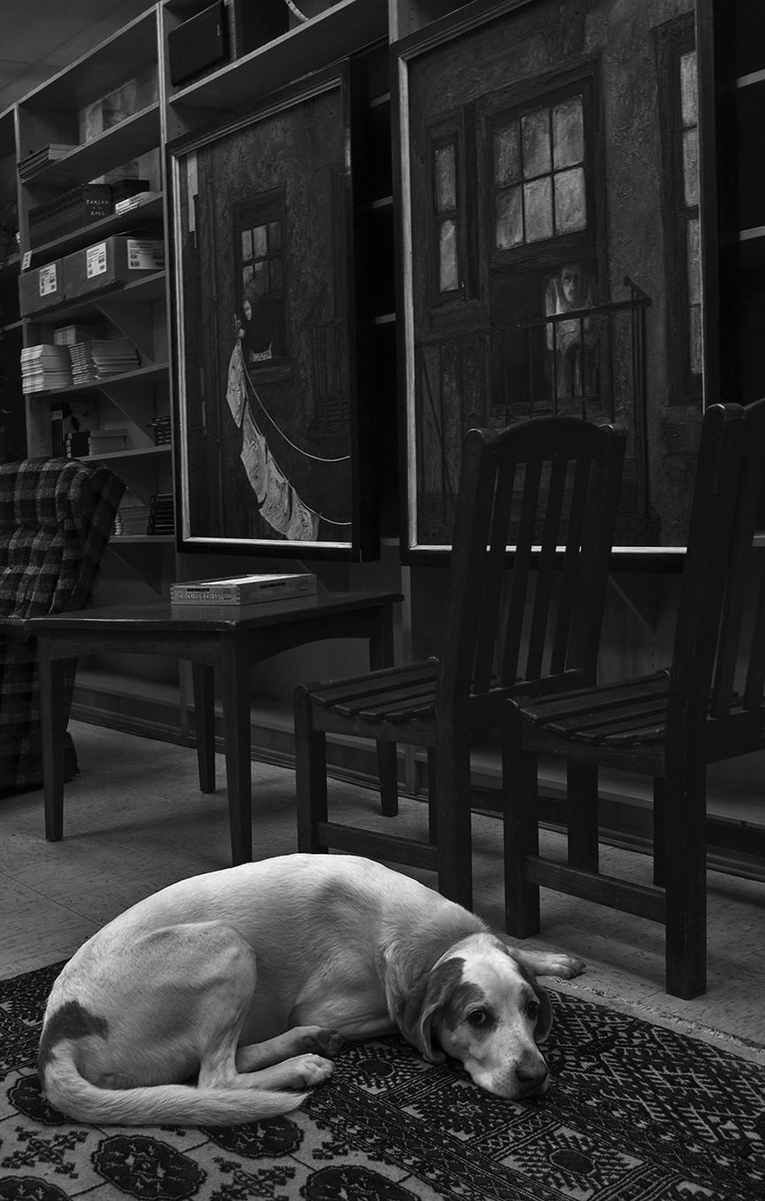 Lonely at the Bookstore