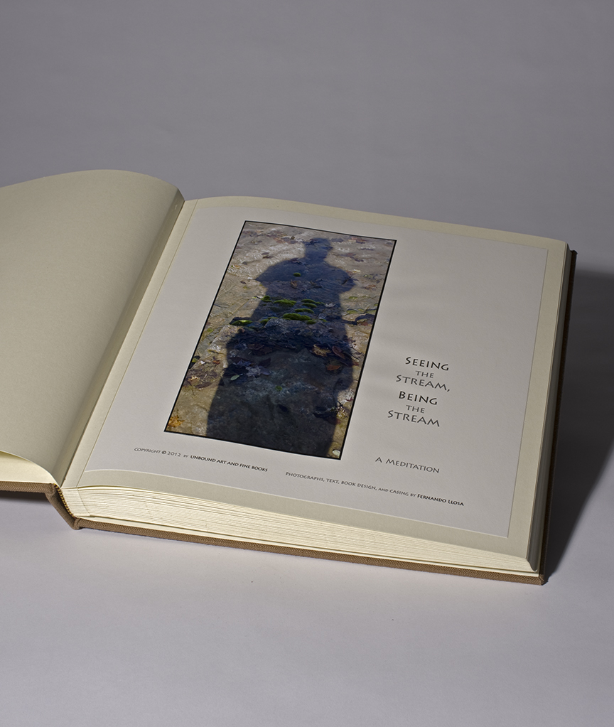 Second Limited Edition - 10 copies - open - Title page.jpg
