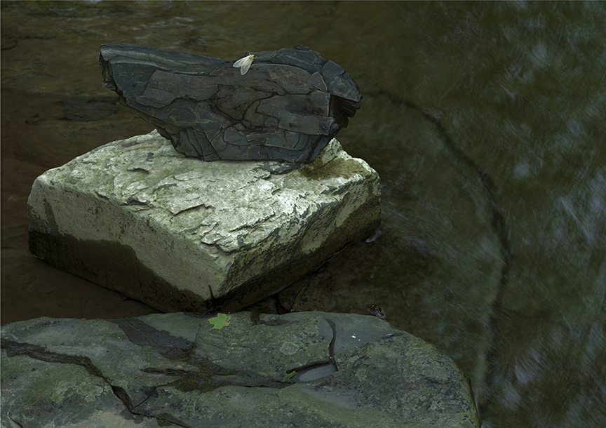 Gallery I - Taughannock Creek