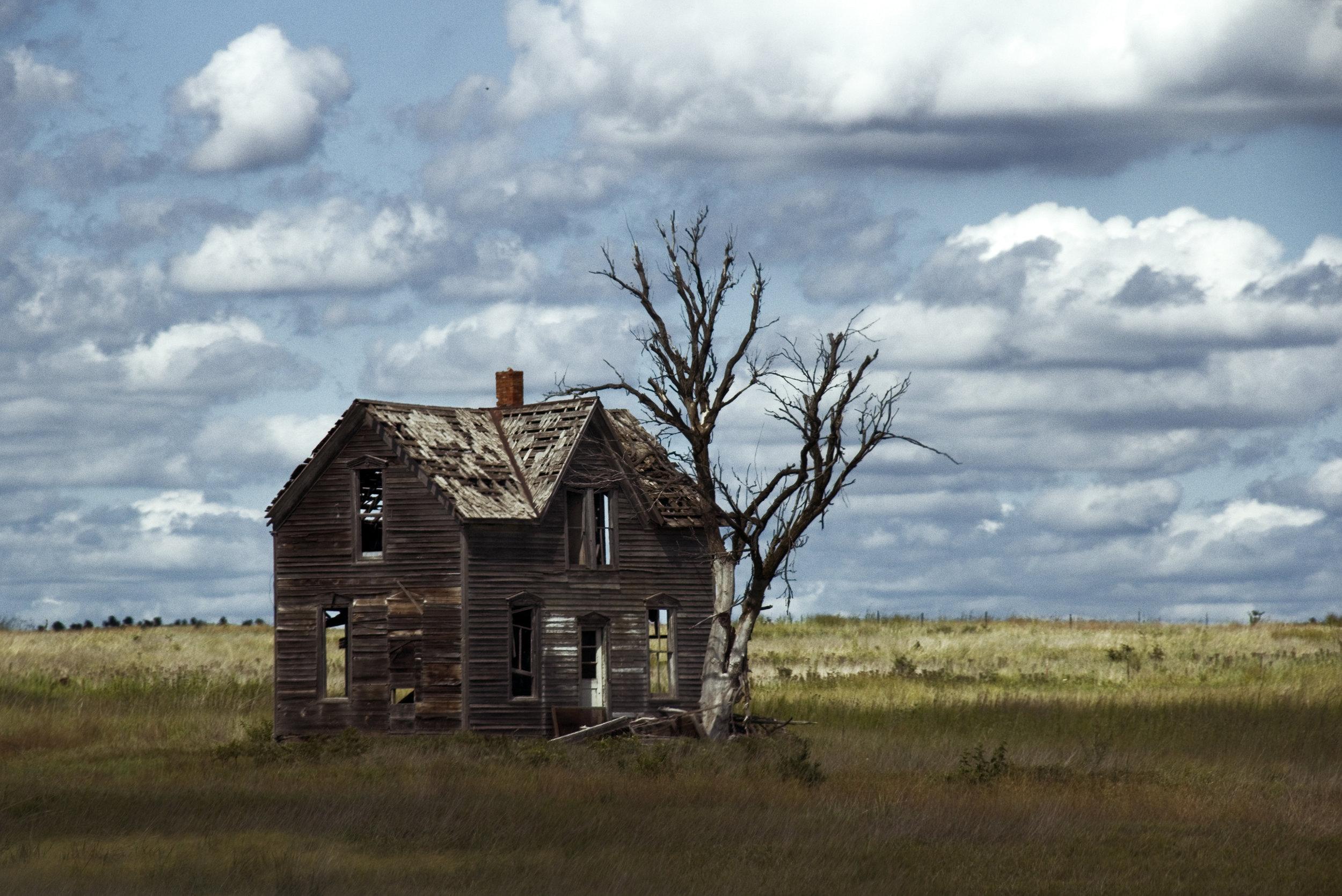 Windswept in Kansas