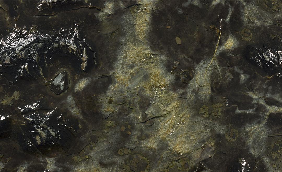 Dark Creek - 8 +.jpg