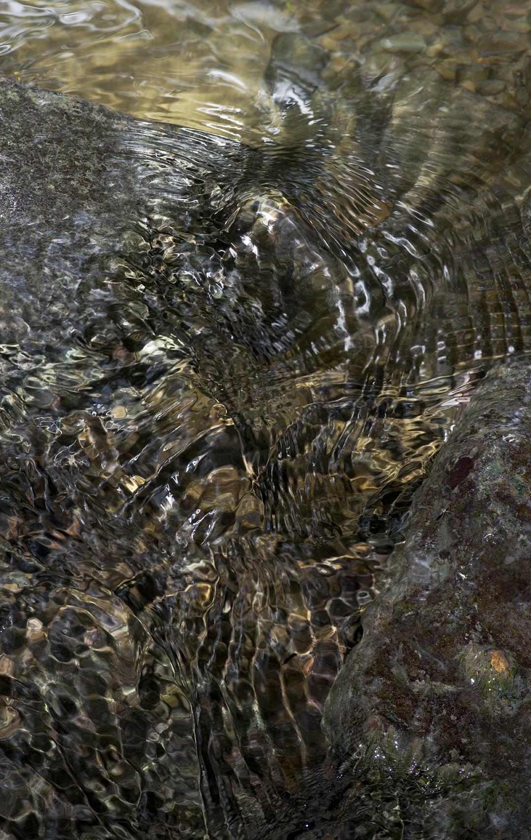 Golden Flow - 4 +.jpg