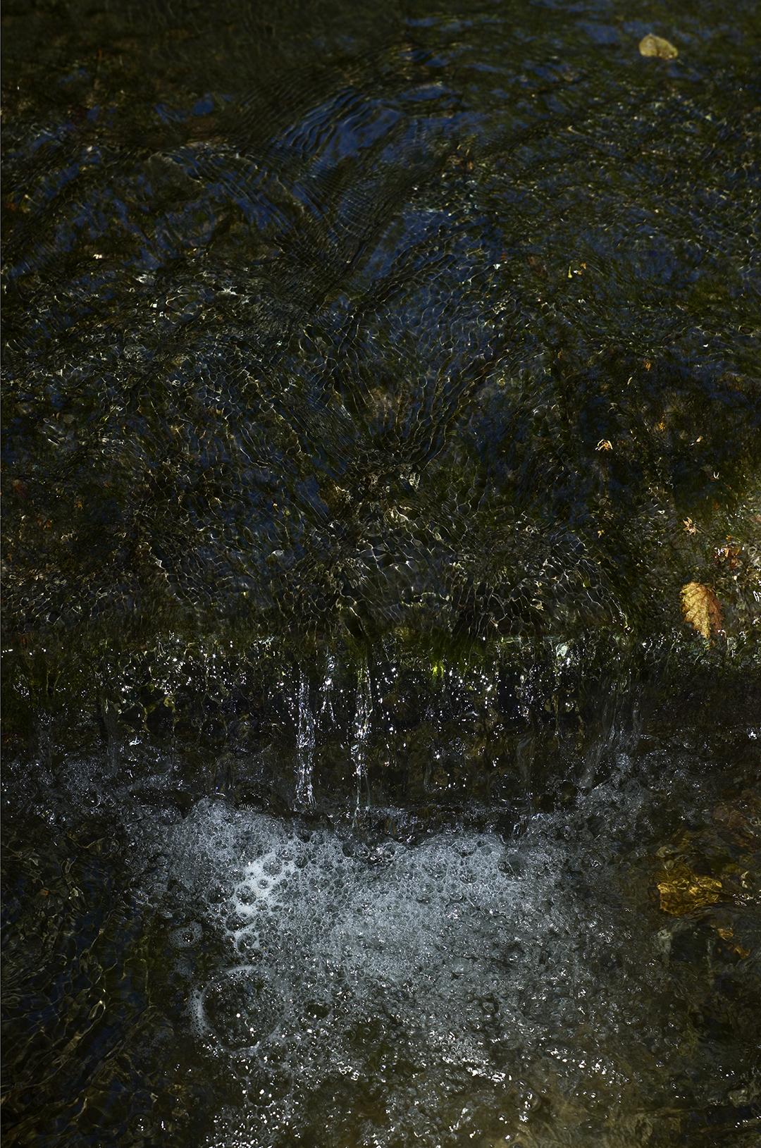 Bubbles in Fall - 2 +.jpg