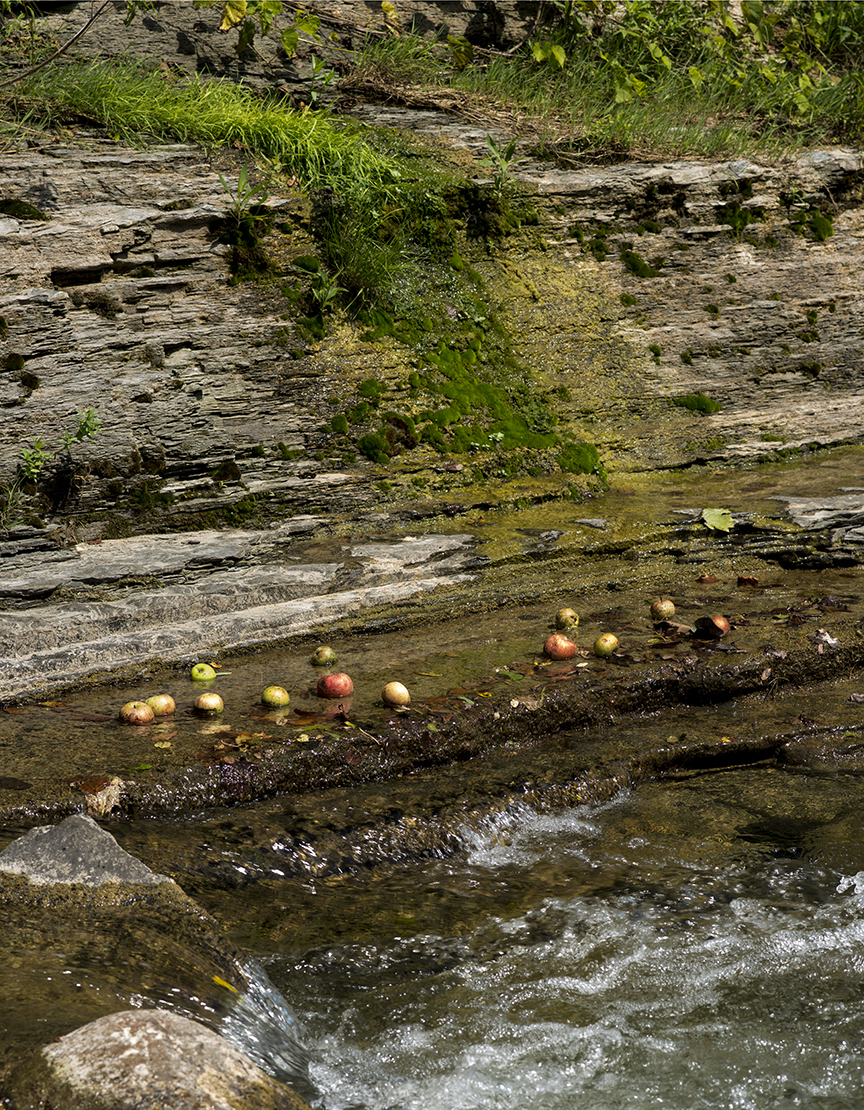 Creek Apples - 4_1.jpg
