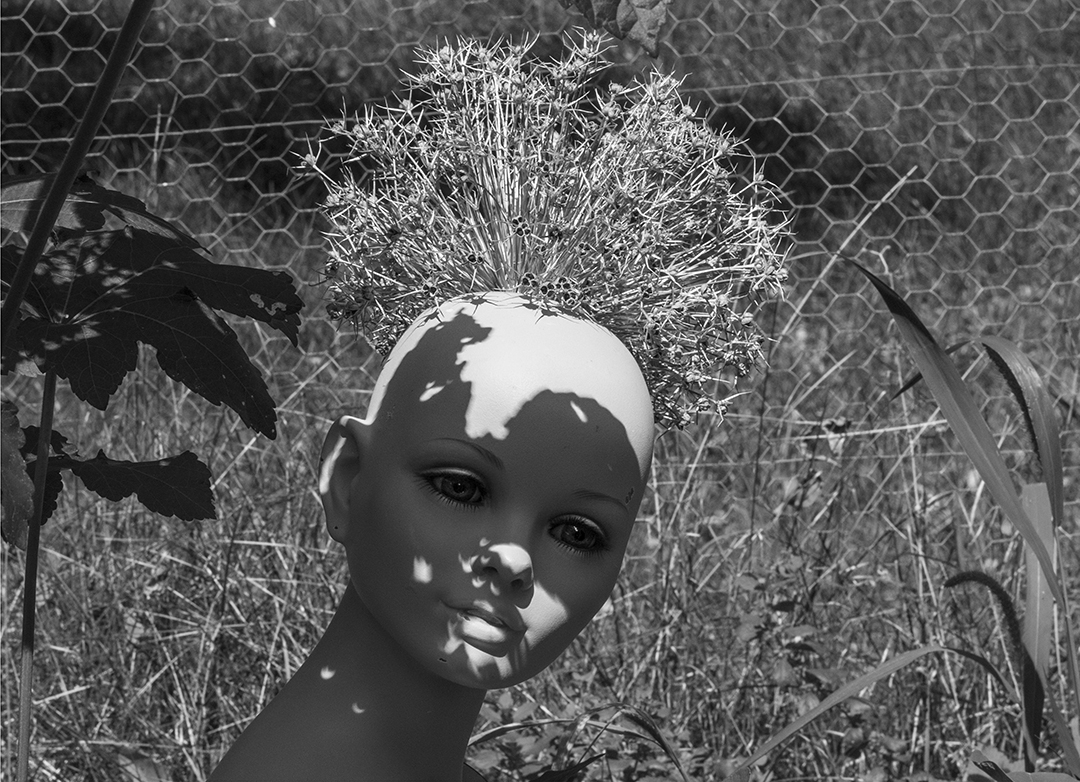 The day of the eclipse Kim and I carried Manetha's mannequin to the garden for a final portrait