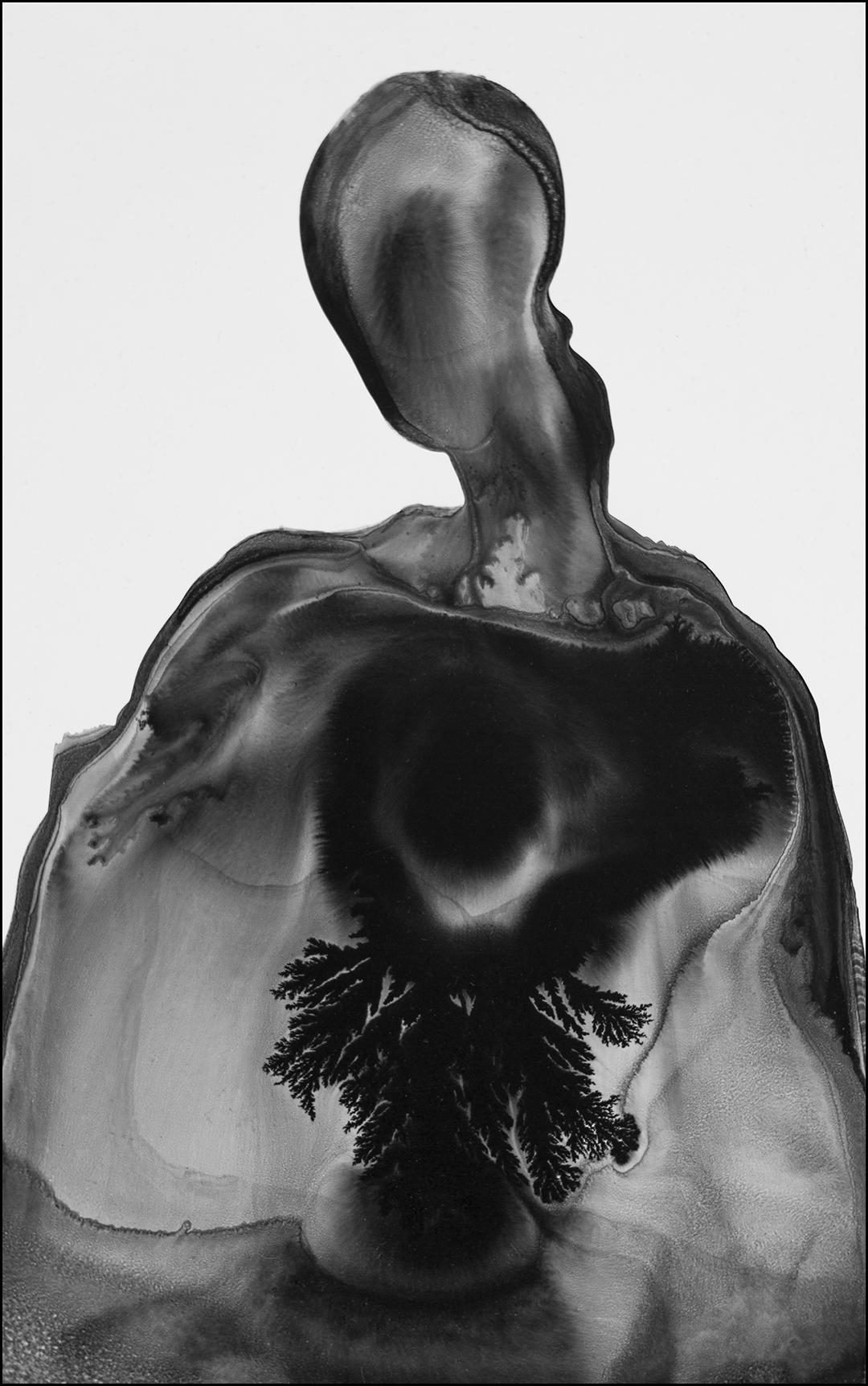 The Flowering of the Empty Self.jpg