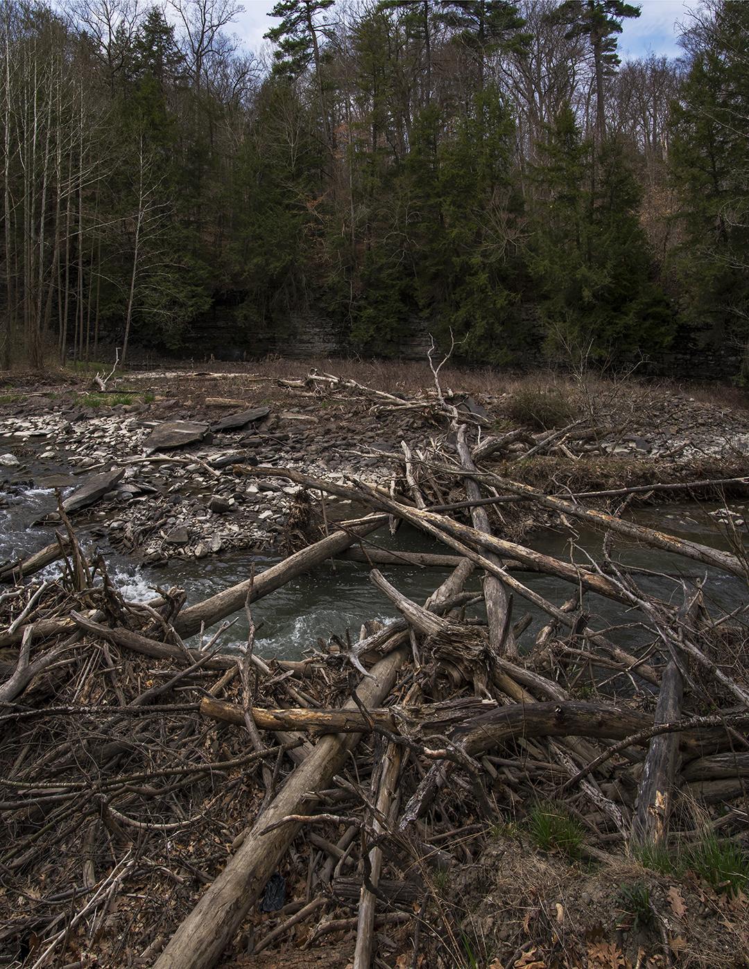 Six Mile Creek - 4.jpg