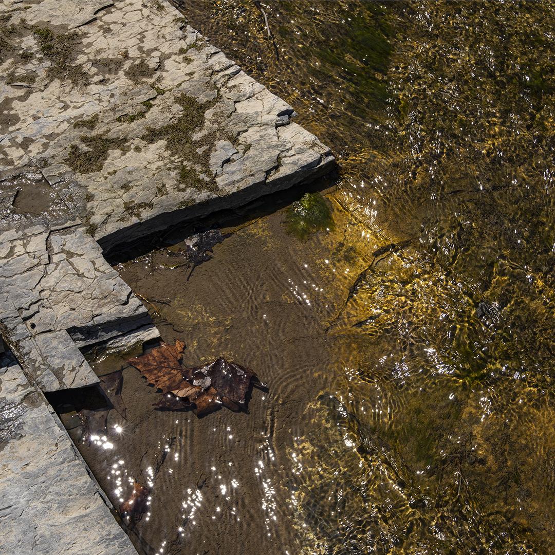 Creek Gold - 1.jpg