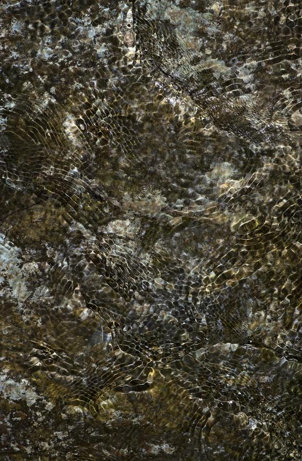 The Cosmic Creek - 12 +.jpg