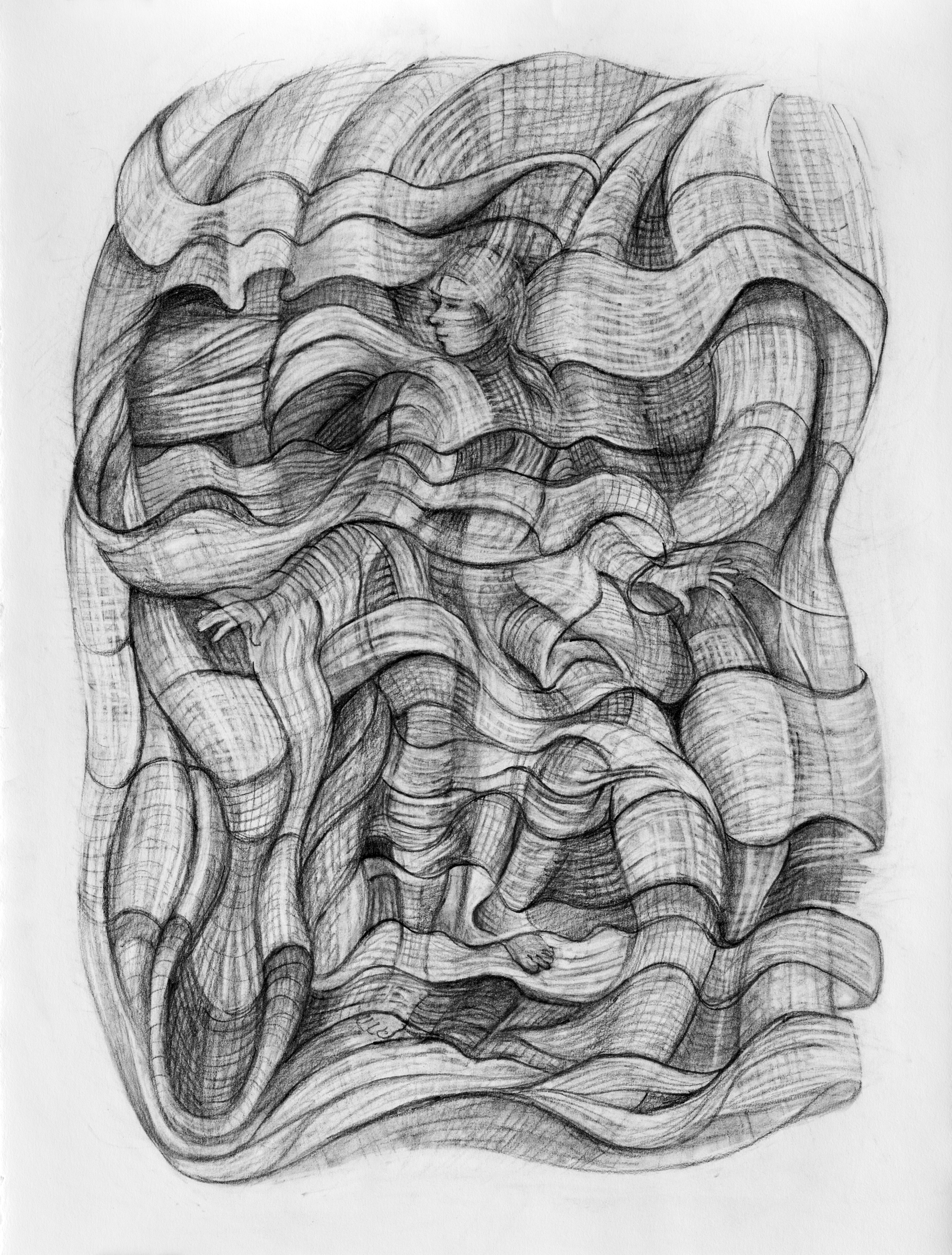 The Fabric of Life   Graphite drawing by  Kim Schrag