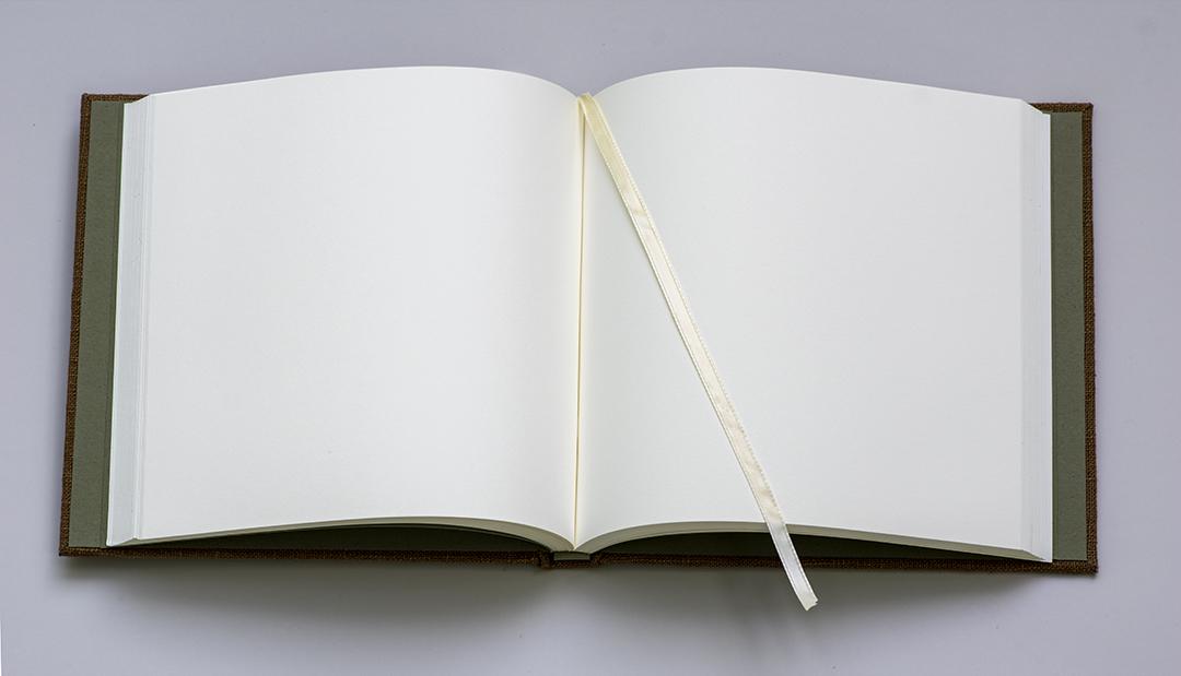Wedding Guest Book - Centerfold.jpg