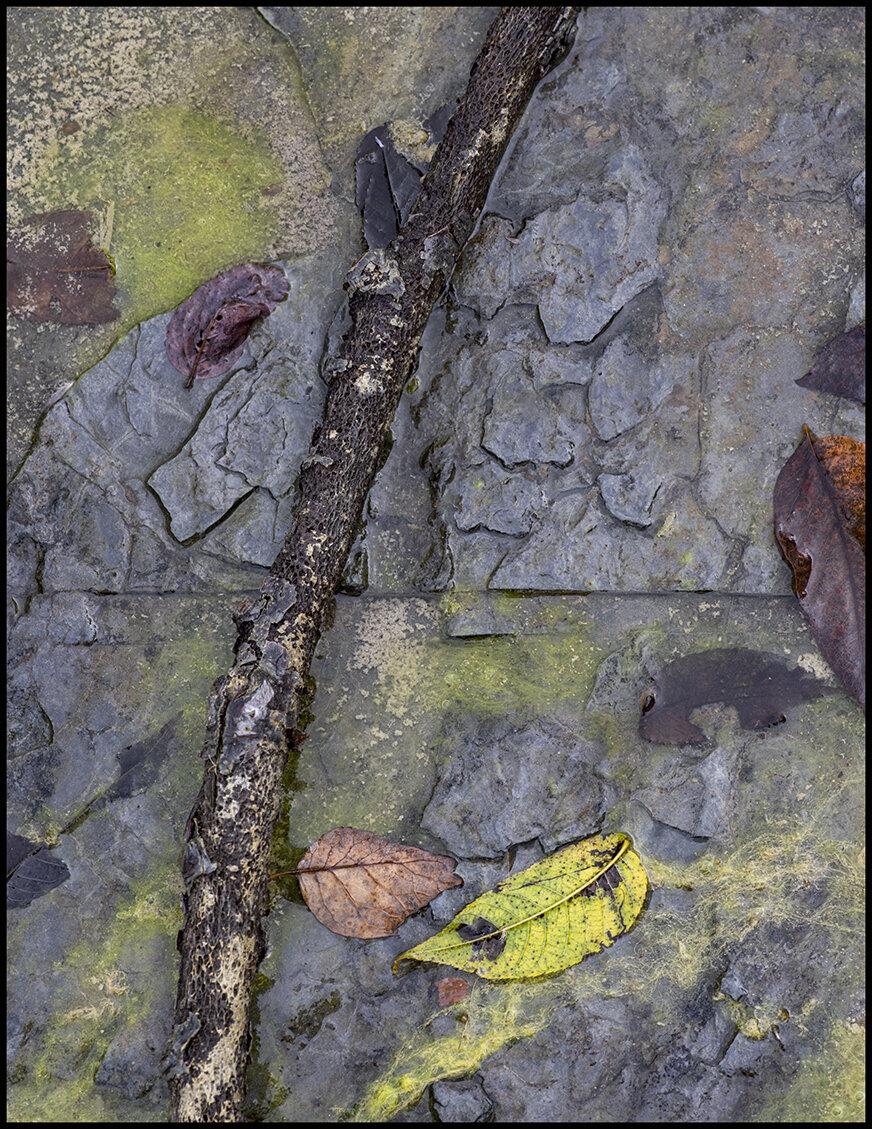Creek Abstract - 3.jpg