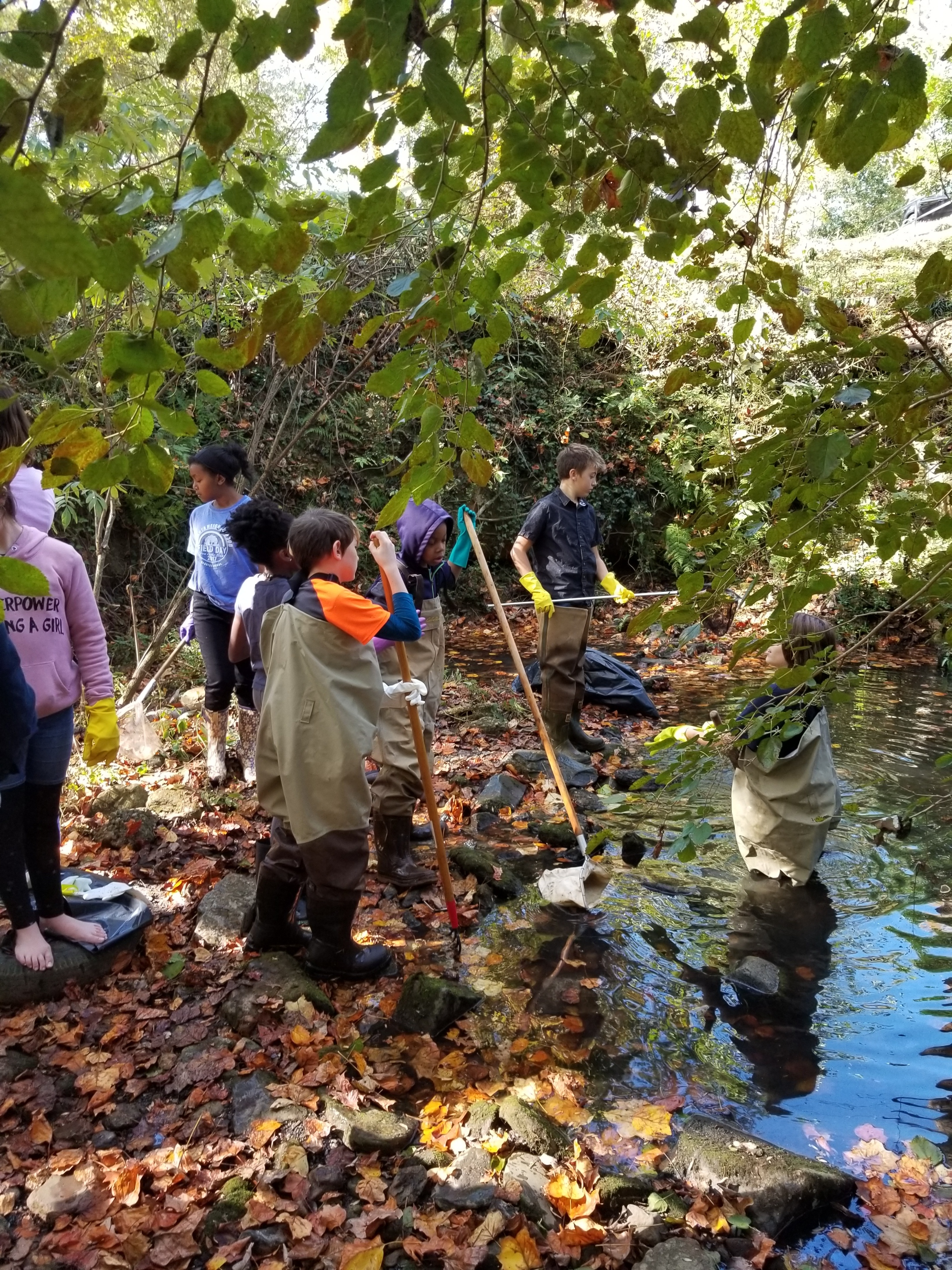 On Friday, November 17th, ANCS 6th graders cleaned litter from Ripplewater Creek in Brownwood Park and learned about watersheds and environmental stewardship.