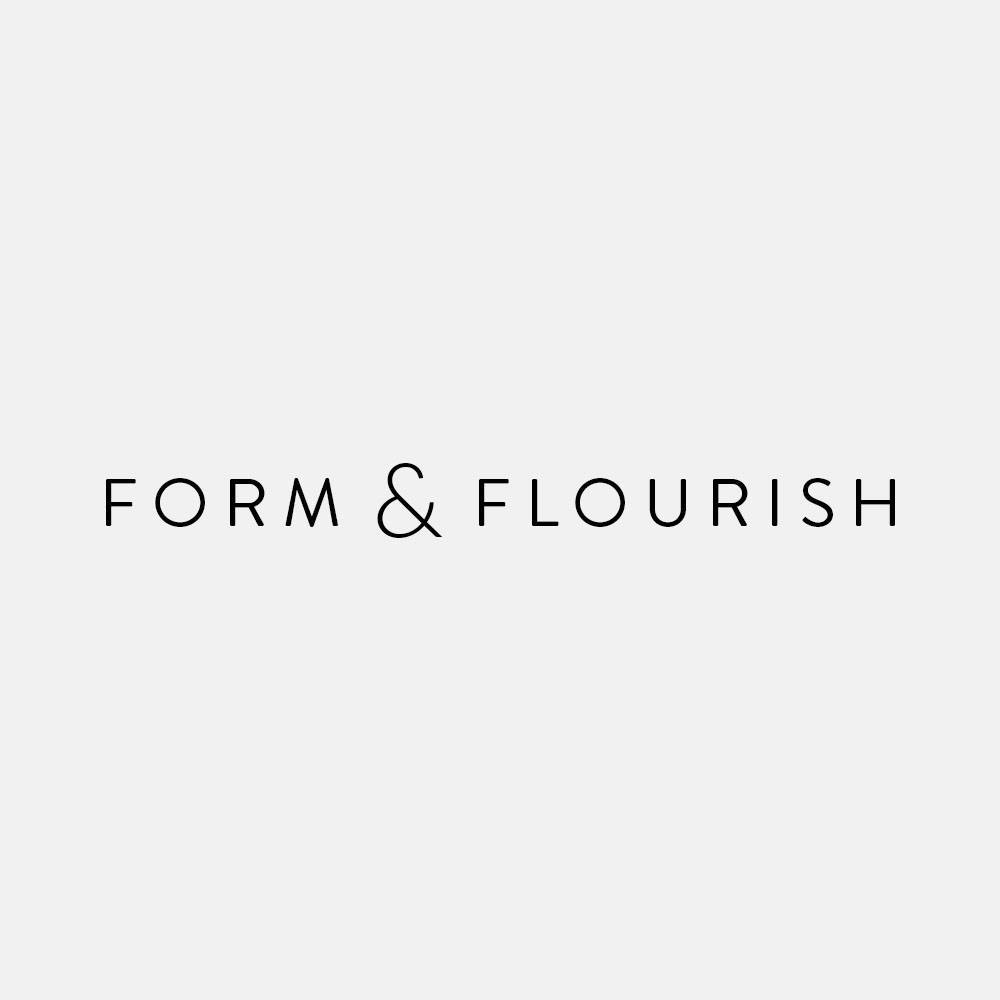 Form & Flourish - As soon as you land onto Fianna's site, you instantly know that this girl knows how to organize content. Even though she just launched her business last year, you can tell Fianna knows web design and can create some pretty amazing sites. My favorite site she's created is: lavendersgreen.co.nz. I discovered Fianna's work on Instagram, and I've loved watching all of her amazing work roll in.