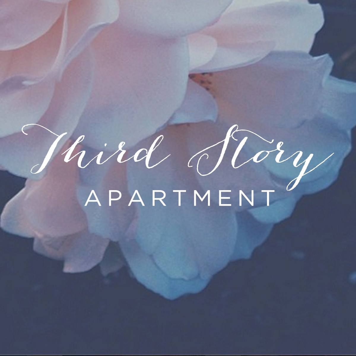 Third Story Apartment - Lindsey's designs stand out from the crowd—not only does she put incredible detail into her custom sites, but she also creates collateral and branding materials for you to give you a well-rounded and cohesive brand, both online and offline. My favorite site she's created is: www. Brooketaelor.com. I discovered Lindsey's designs through the wonderful world of Pinterest!