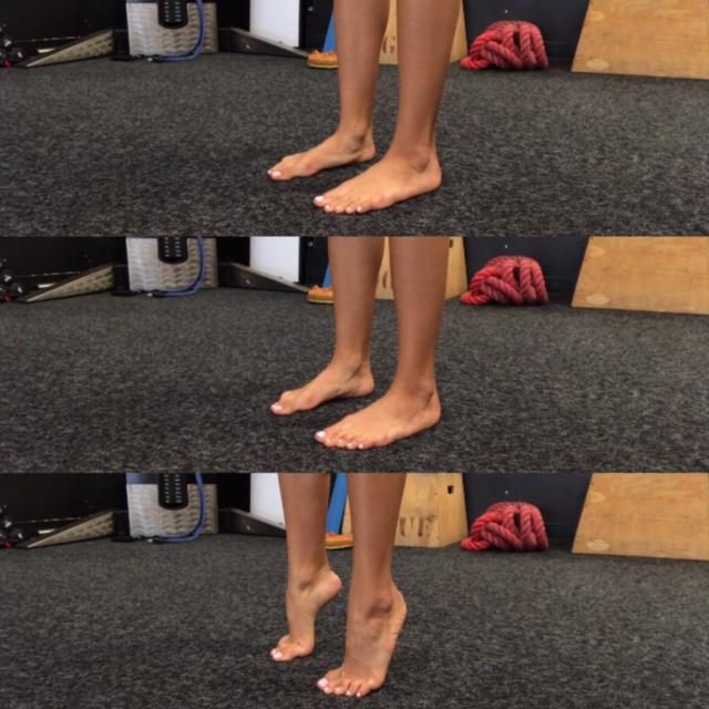 Figure 1: Double leg heel raise 3x25