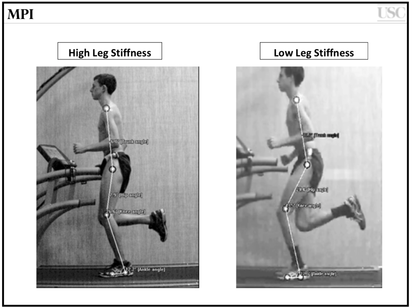 Photo: From Powers et al- Movement Performance Institute
