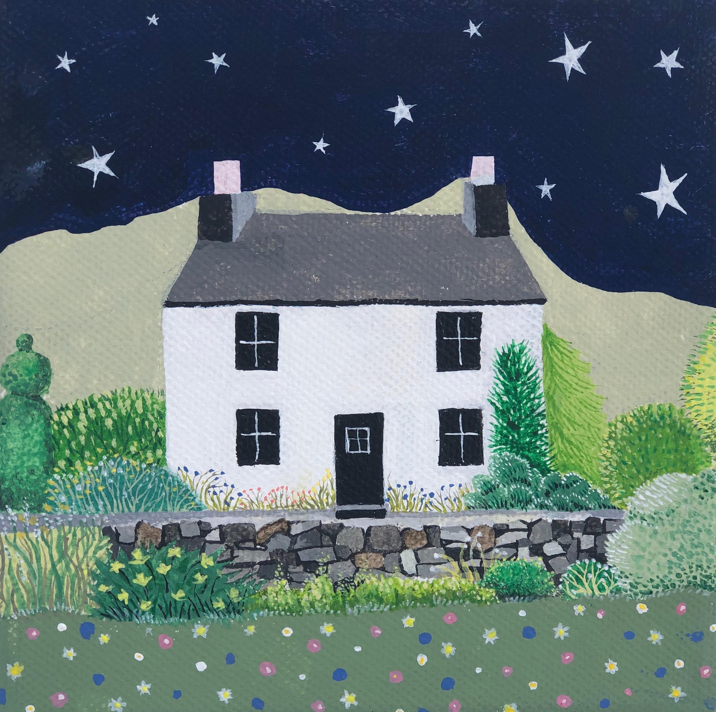 painting-house w:stars.jpg