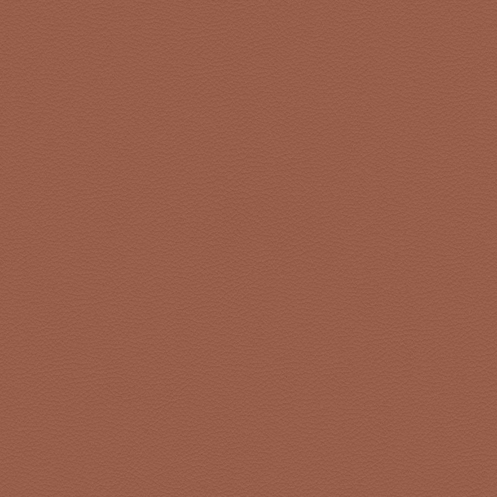 Paloma Copper