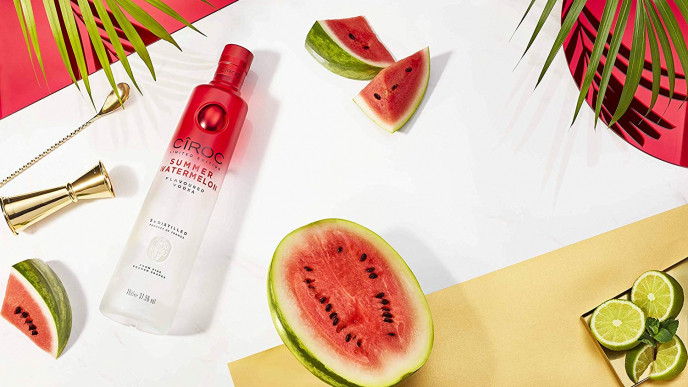 ciroc watermelon flatlay.jpg