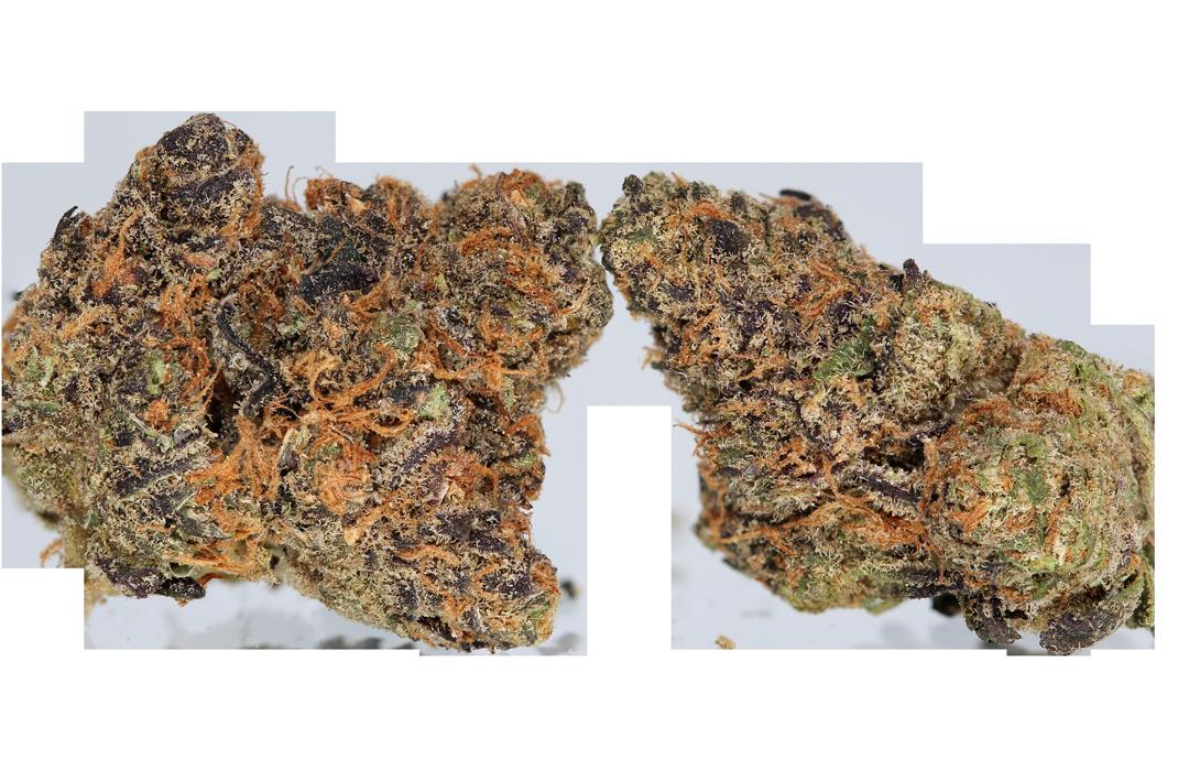GrapeCookies-Cutout.png