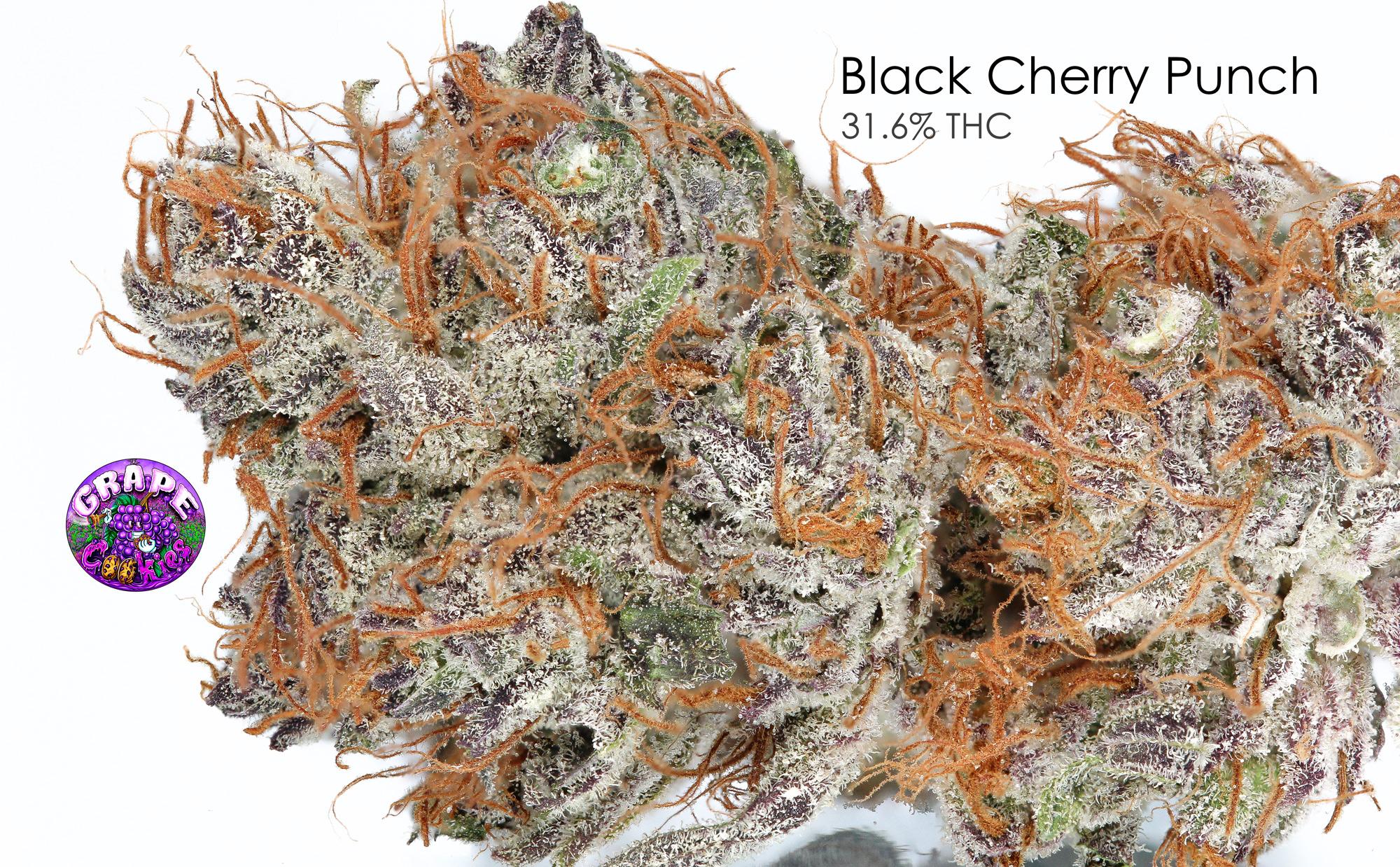 BlackCherryPunch-IGwLogo.jpg