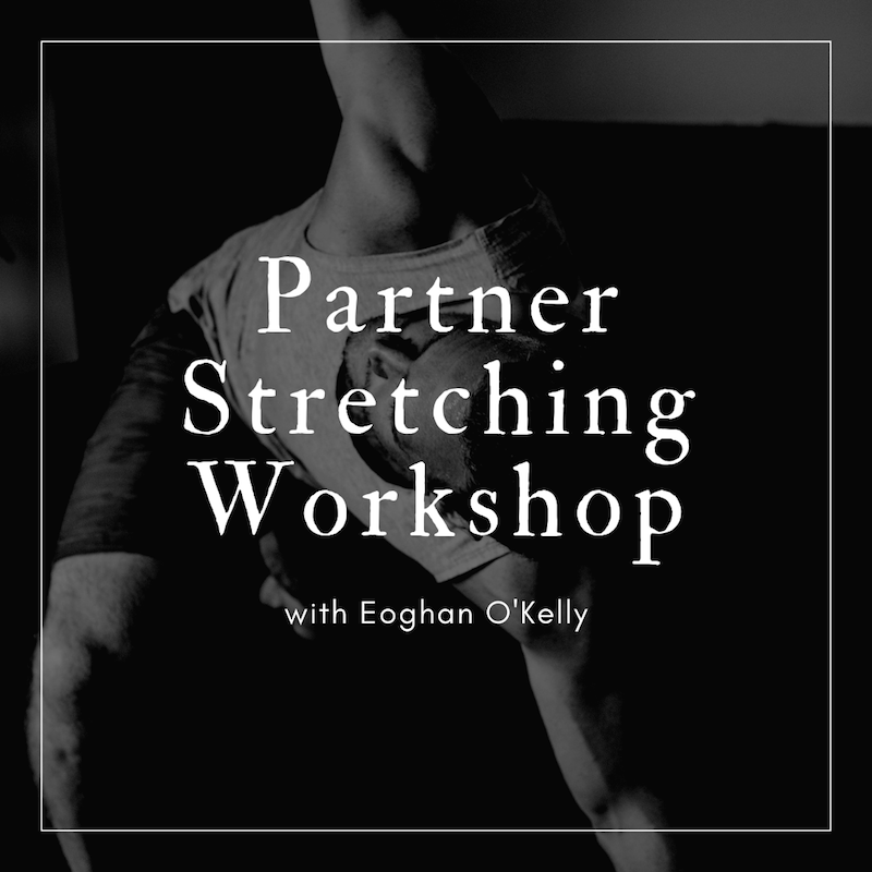 Partner Stretching Workshop.png