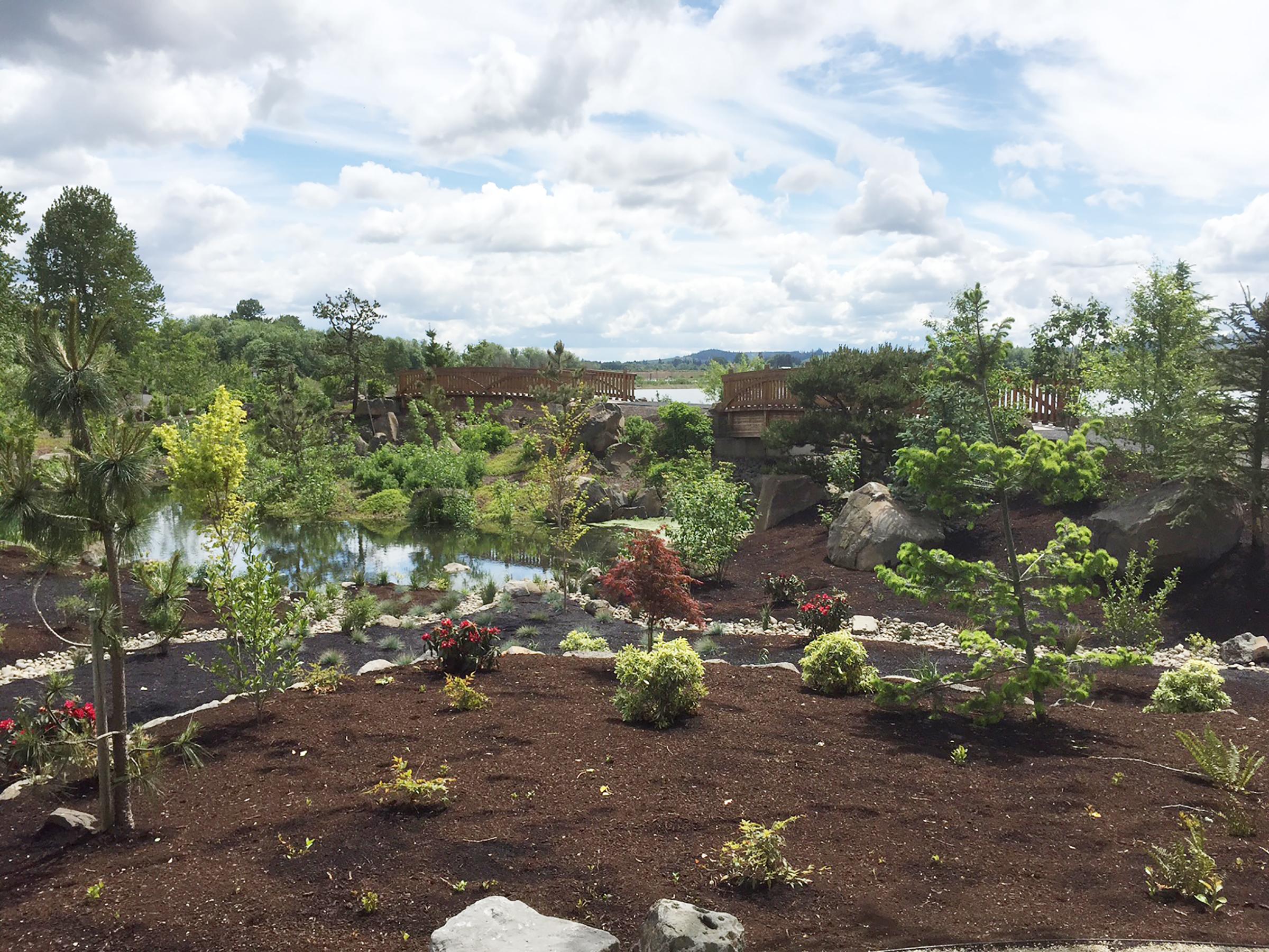 Fernhill Water Garden
