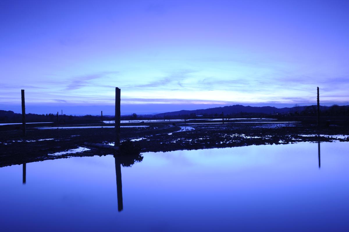 Sunset Over Fernhill Wetlands