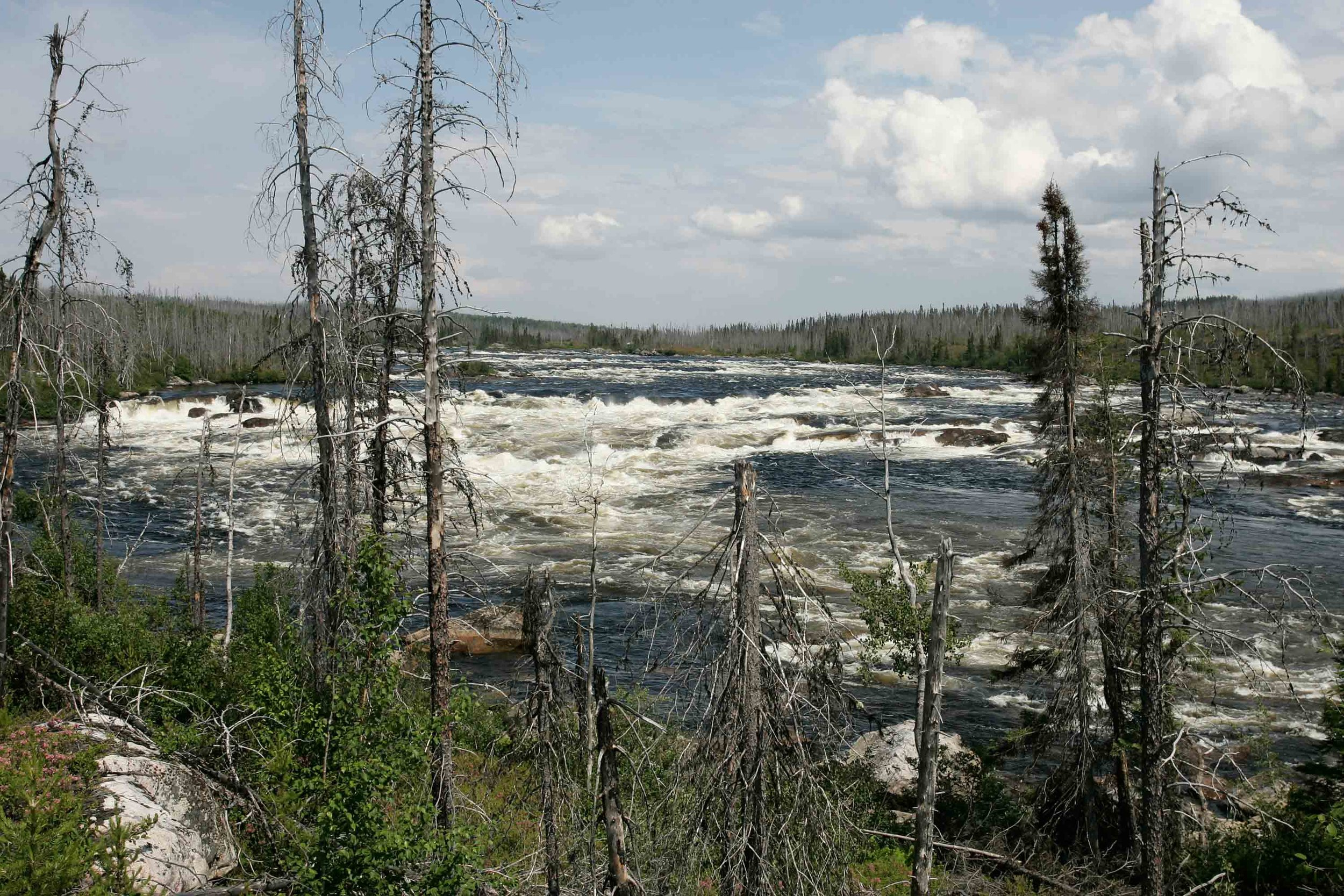 Endangered Canadian rivers
