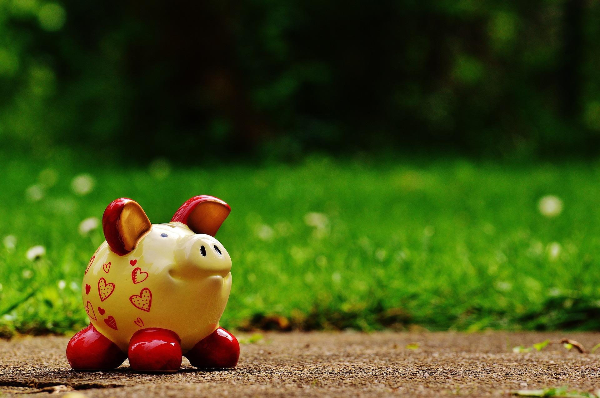 chiropractic wealth management children financial