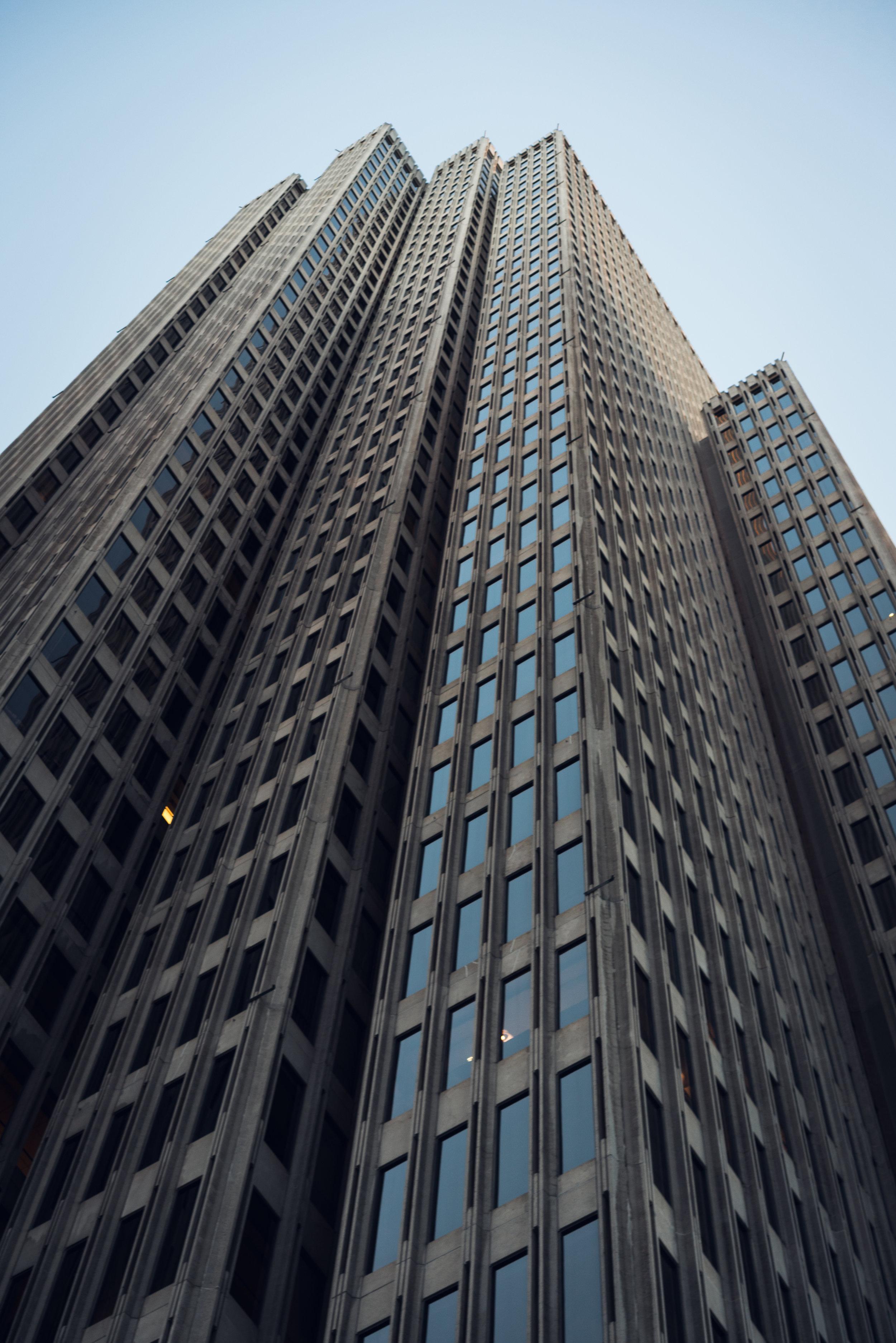 SF look up tall.jpg