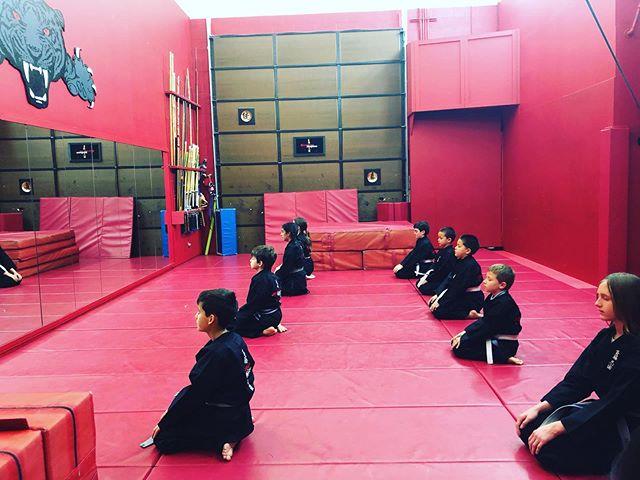 Meditation is paramount in ninjitsu mastery. #saitobloodlineninjitsu #mastermaui #scottsdale #dojolife #ninjitsu #meditation