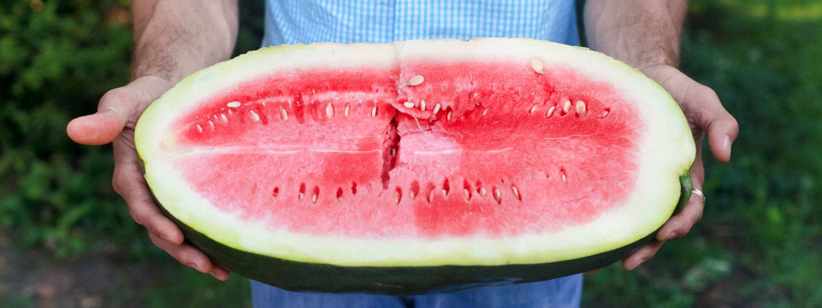 Nat Bradford will be telling the world about his family's heirloom Bradford Watermelon at Slow Food Nations in July.